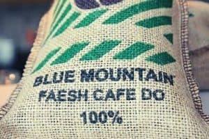 Best Jamaican Blue Mountain Coffee
