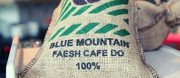 Best Jamaican Blue Mountain Coffee