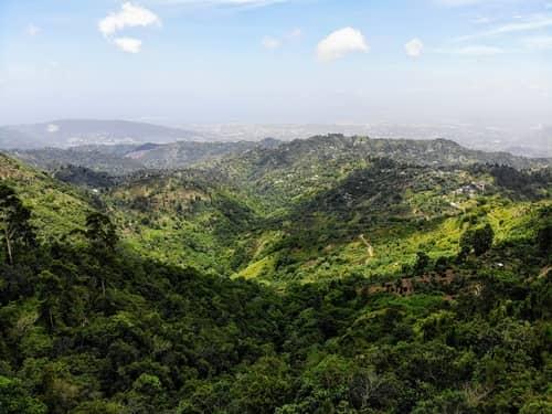 jamaica mountains