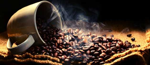 coffee beans for french press