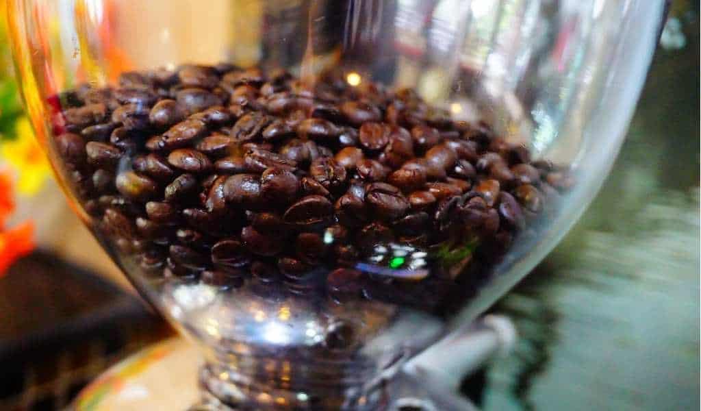coffee beans hopper